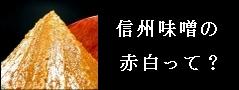 信州味噌の赤白